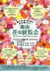 湘南花の展覧会~The Terrace Mall Flower Garden~